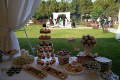 Garden wedding – Artist – Baneasa